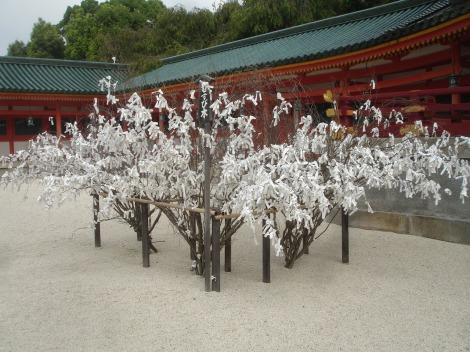 37 Kyoto