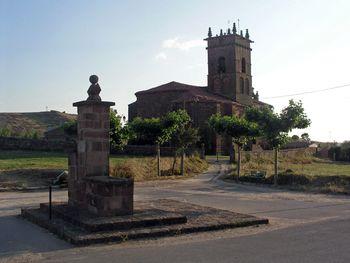 santa cruz 9