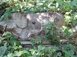 DSCN2777